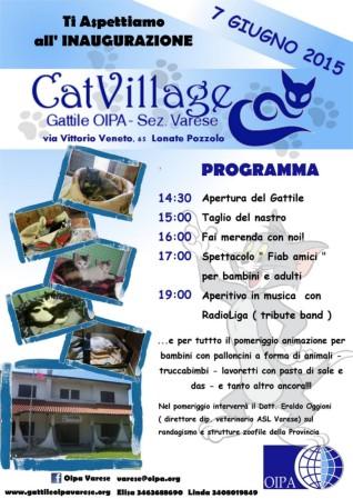 CatVillage
