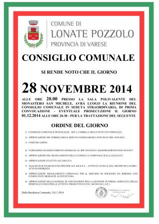 Consiglio Comunale del 28 novembre 2014